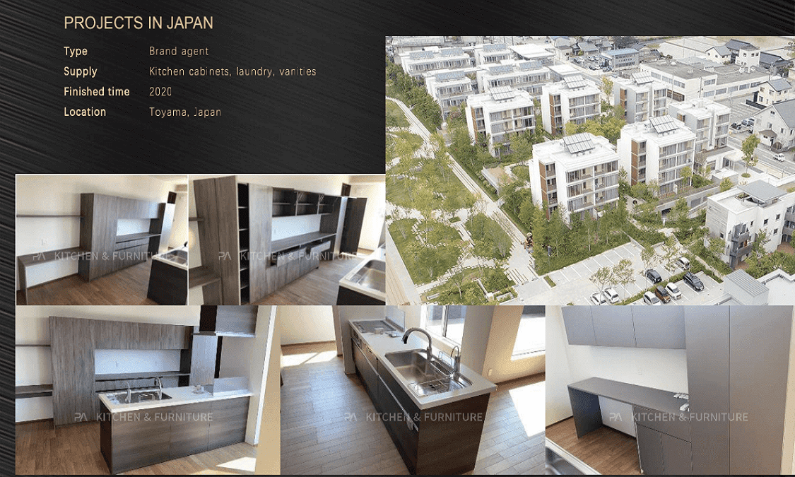 PROJECTS IN JAPAN